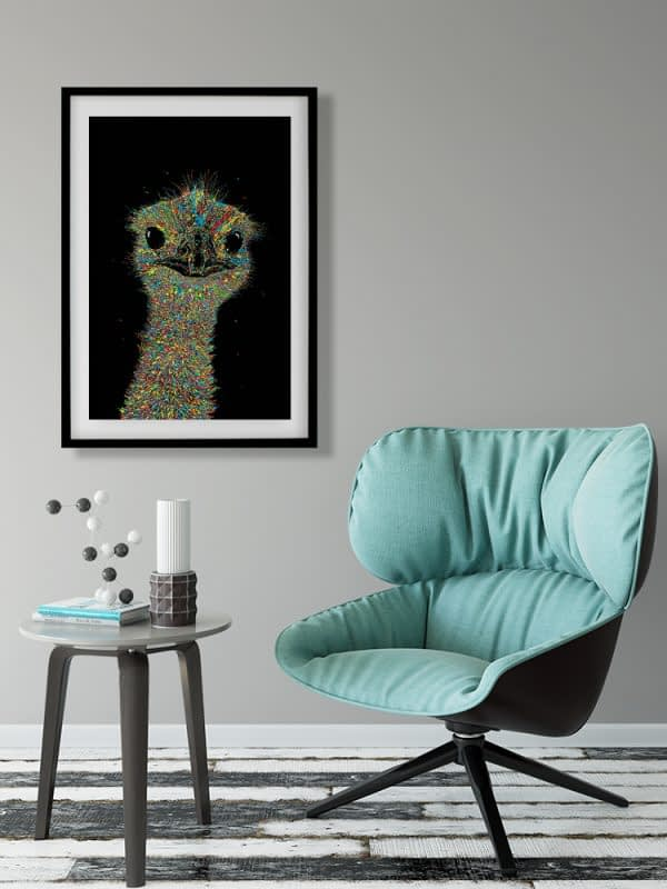 Emu Art
