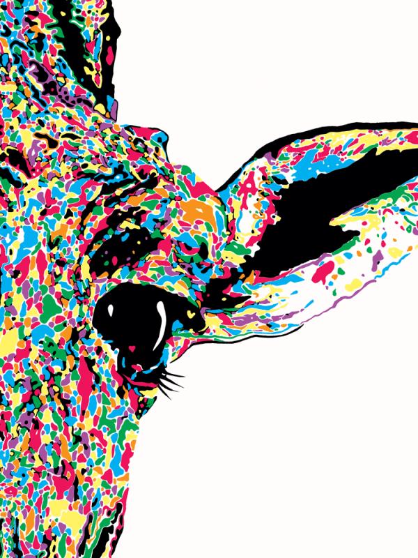 Audrey Giraffe Close Up