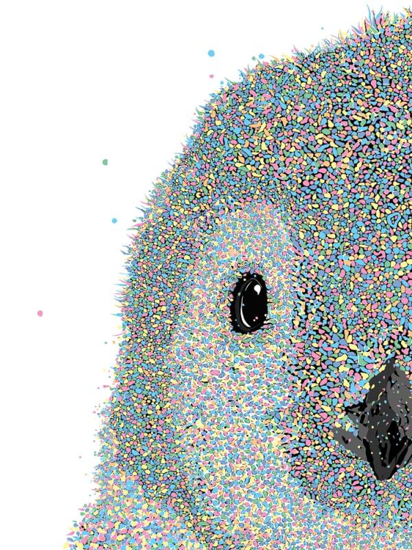 Franklin Penguin Close Up