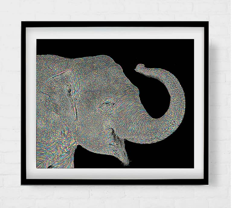 Asian Elephant Artwork