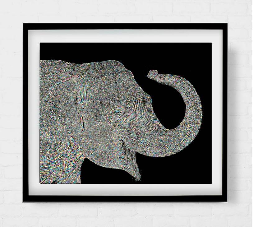 Asian Elephant Artwork